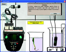 http 44 svt free fr jpg consommation glucose muscles htm